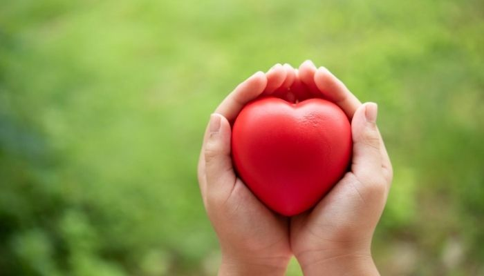 JAMLI - La intuición del corazón