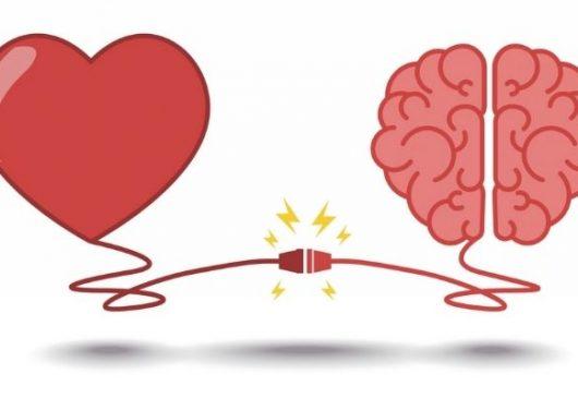 HeartMath: Las interacciones del cerebro y el corazón