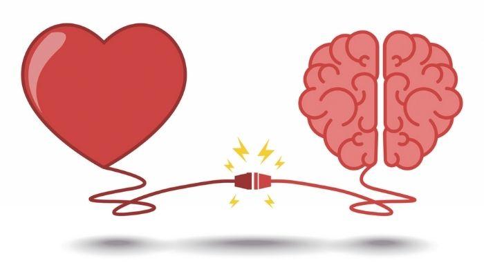 JAMLI - Conexiones entre el cerebro y el corazón